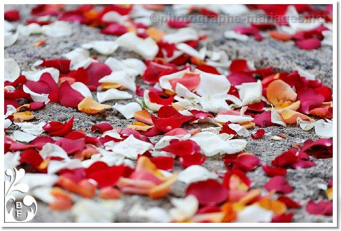 petales de rose au sol apres la ceremonie photographe de mariage. Black Bedroom Furniture Sets. Home Design Ideas